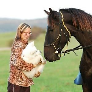 Kýčovitá variace na téma kůň a pes